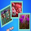 Rainy flowers in garden puzzle