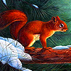 Squirrel in the winter slide puzzle